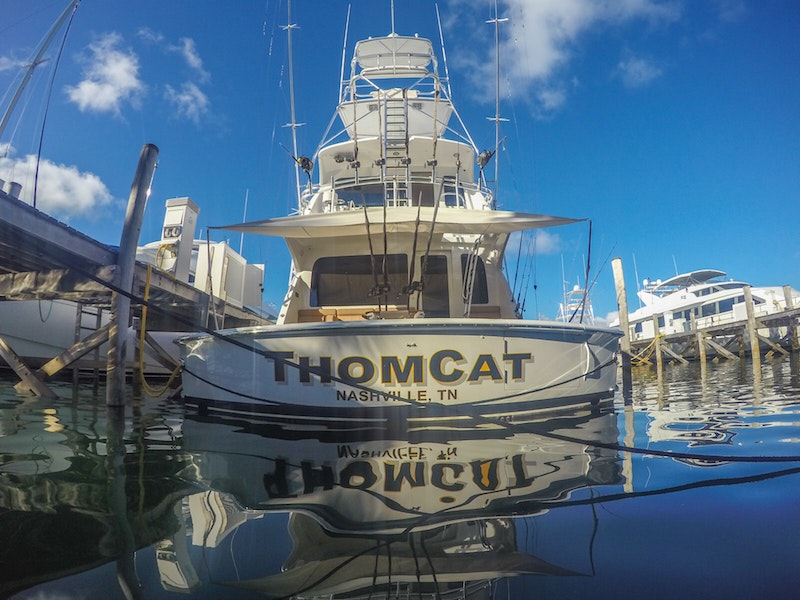 Thomcat