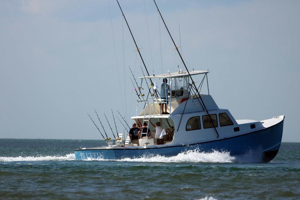Bluefin sm