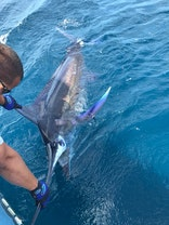 59th annual big rock blue marlin tournament