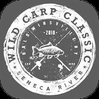 Wild carp classic.png?ixlib=rails 2.1